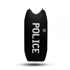 Ballistic ARM Shield